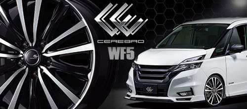 CEREBRO WF5